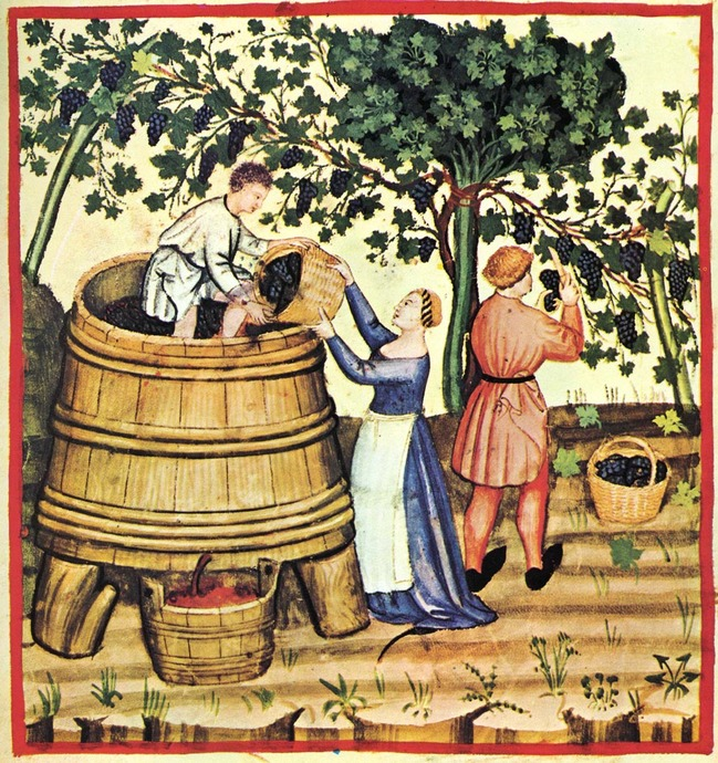 ancient_wine.jpg