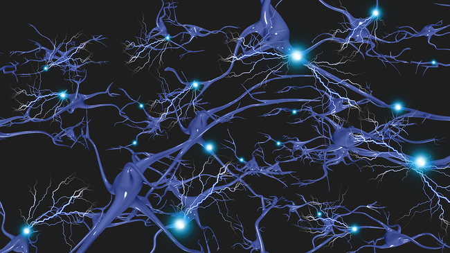 bigstock-Brain-cells-with-electrical-fi-58947647.jpg