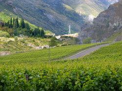 https://www.vinography.com/wp-content/uploads/2020/04/chard_farm_vineyards-thumb.jpg