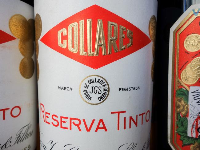 colares_tasting-4.jpg