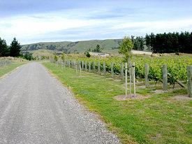 https://www.vinography.com/wp-content/uploads/2020/04/escarpment_vineyards-thumb.jpg