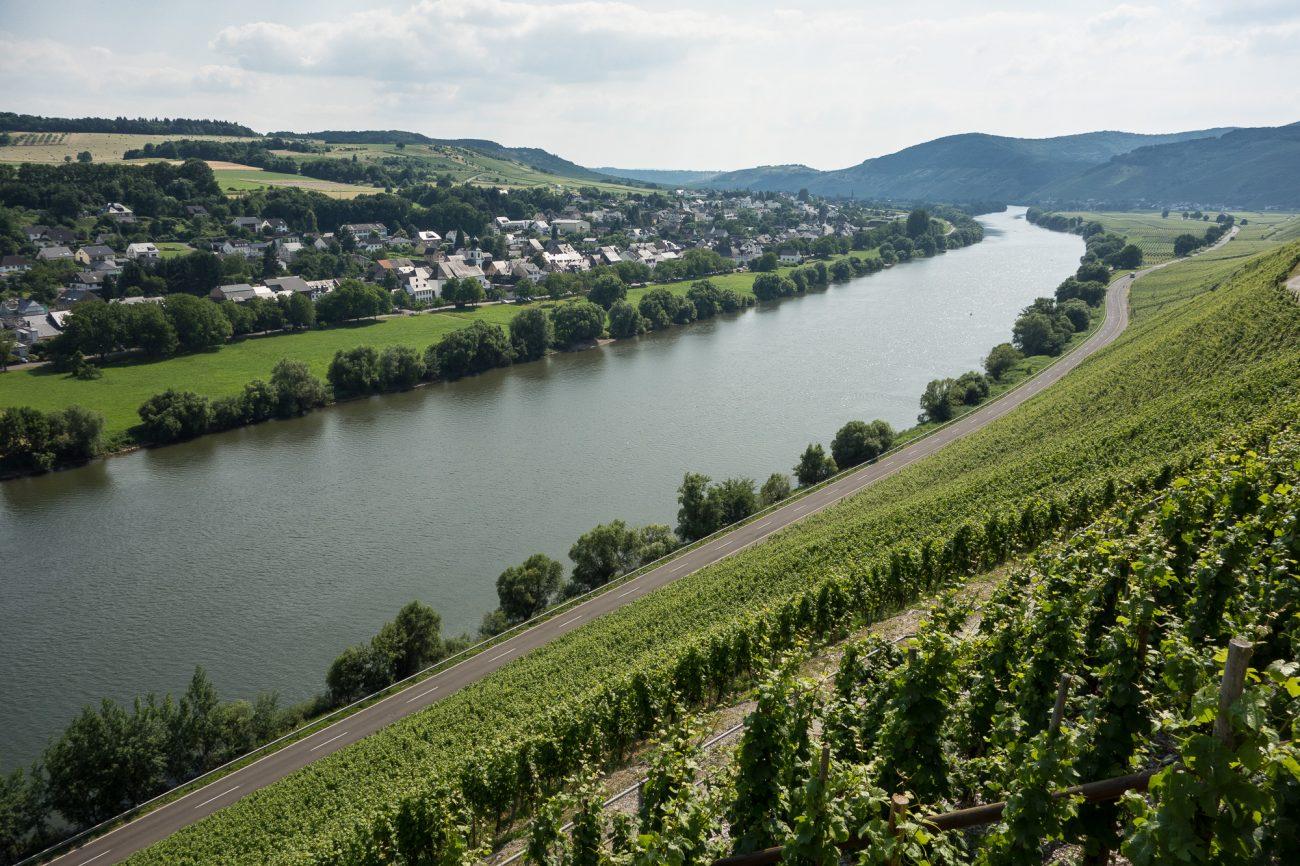 Brauneberger Juffer Vineyard