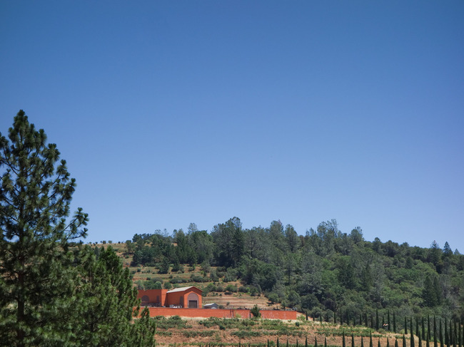 renaissance_vineyards-15.jpg