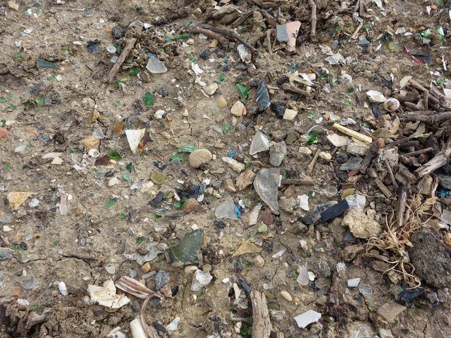trash_vineyards-6.jpg