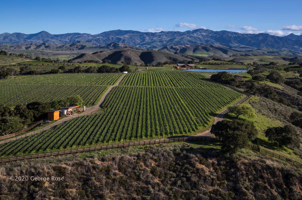 Landscape photo of Santa Ynez Valley